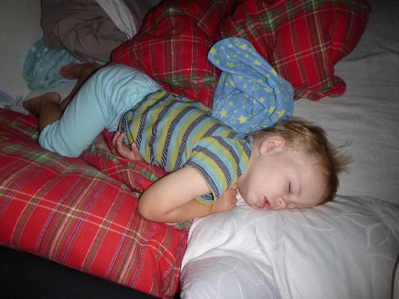 Tajemství dlouhého spánku